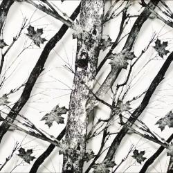 Трикотаж мембрана Зимний лес