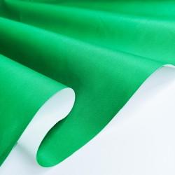 Таслан на мембране 3К/3К Зеленый